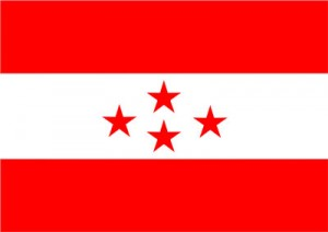 Nepali-Congress-Flag1315101735