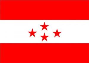 Nepali-Congress-Flag1315101735