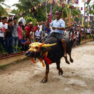 Cambodia Festival for the Death