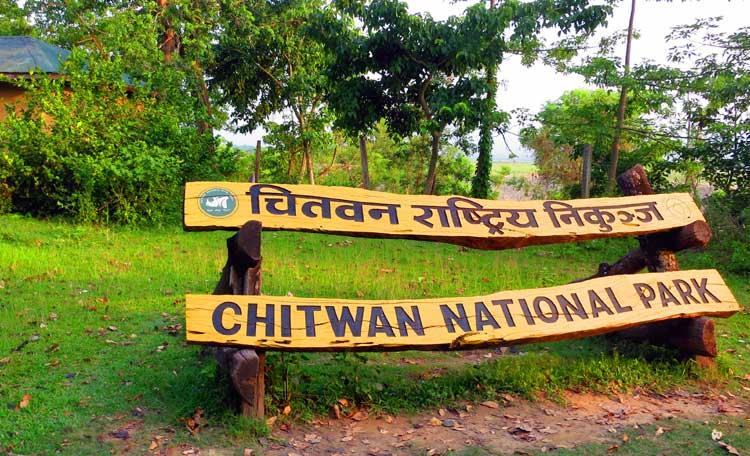 chitwan-national-park-82420