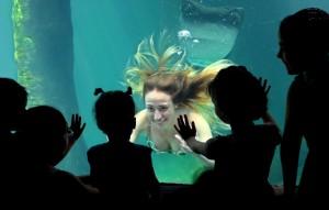 Brazil Aquarium Mermaid