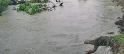 Mahakali River