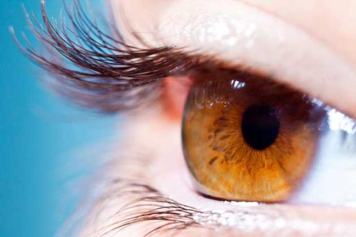 eyes-brown1